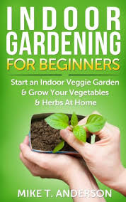 indoor gardening for beginners start an indoor veggie garden