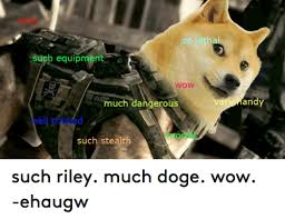 Much Doge Meme - such equipment wow much dangerous such stealth ver andy such riley