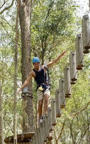 treetops sydney central coast newcastle eco tourism family