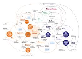 Corruption Map What Dynamics Drive Police And Judicial Officers To Engage In