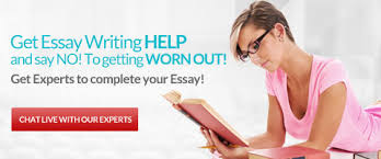 essay service best essay help by top essay writing company