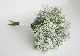 baby s breath bouquet baby s breath bouquet fresh bouquets wedding