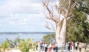 The Australian Botanic Garden Gallery Australia S Top 10 Botanic Gardens Australian Geographic