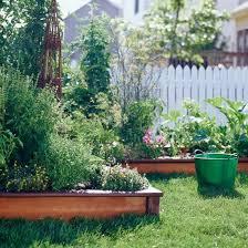 Vegetable Beds Best 25 Raised Vegetable Gardens Ideas On Pinterest Raised