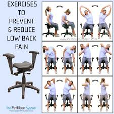wobble chairs for chiropractic best home chair decoration