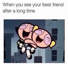 Best Friends Meme - best 25 best friend meme ideas on pinterest true memes lol and