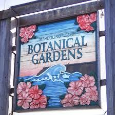 botanical gardens fort bragg ca festival of lights mendocino coast botanical gardens home facebook