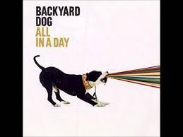 on my vibe backyard dog youtube