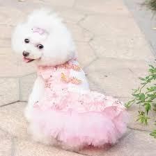 dog wedding dress princess custom cheongsam dress thick coat pet dog autumn wedding