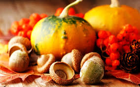 fall pumpkins background pictures thanksgiving screensavers and wallpapers group 49