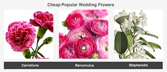 cheapest flowers average cost of wedding flowers valuepenguin