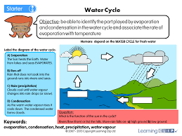 the water cycle a year 4 science worksheet