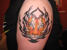 the latest tiger tribal tattoo for men real photo pictures
