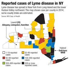 Map Of Albany New York by No Cure For Lyme Disease Treatment Debate Times Union