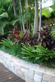 Landscaping Ideas For Backyard by Best 25 Tropical Backyard Landscaping Ideas On Pinterest