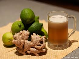 ginger recipe ginger beer chelsea green publishing