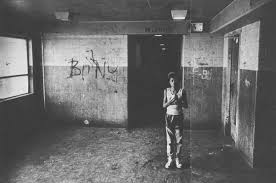 homes in the 1980s henry horner homes 1980s chicago gang history