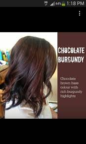 25 chocolate red hair ideas dark red brown
