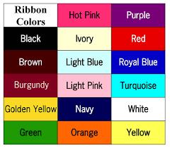 personalized sashes 12 00 3 inch personalized sash