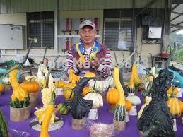 ornamental gourd seeds reviews shopping ornamental gourd