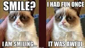 New Grumpy Cat Meme - 284578 grumpy cat moustache magazine