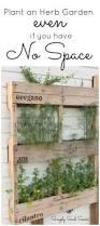 17 best images about gardening vegetable gardening on pinterest