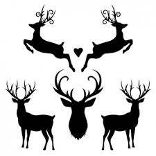 deer vectors photos psd files free download