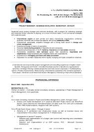 Resume For A Business Owner Classical Cv Filipe Fonseca Oliveira Oct 2013 Uk