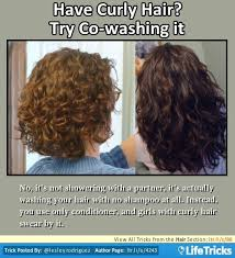 tricks to get the hairstyle you want in acnl best 25 curly frizzy hair ideas on pinterest frizzy hair tips