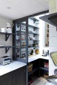 Modern Kitchen Pantry Cabinet Apartments Pleasing Advantages From Kitchen Pantry Cabinets