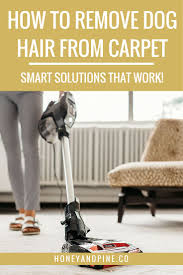 How Do I Clean Laminate Flooring Best 25 Cleaning Dog Hair Ideas On Pinterest Car Cleaning Tips