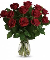 a dozen roses 1 dozen premium roses white plains yonkers new york