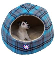 Igloo Dog Houses Omega Extra Large Hooded Pyramid Igloo Dog Bed For Two Small Or