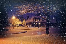 christmas lights that look like snow falling free images light sunlight home evening weather snowy