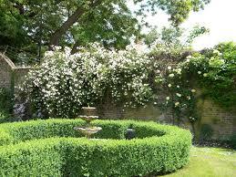 information for desiging english gardens