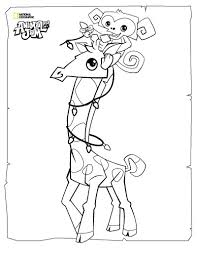 Animal Jam Coloring Pages The Daily Explorer Coloring Page Of