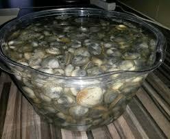 cuisiner les coques cuisson des coques recette de cuisson des coques marmiton