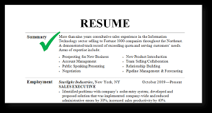 summary on a resume gorgeous inspiration how to write a summary for resume 11 how to