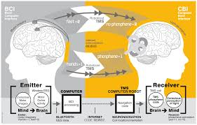 Human Brain Mapping The First Human Brain To Brain Interface Has Been Created In The