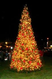annual tree lighting ceremony palm fl official