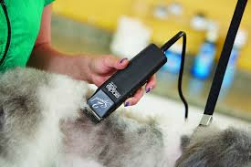 pet hair clippers for dogs quick buying guide u2013 top dog tips