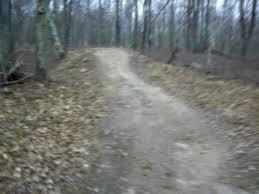 updated backyard motocross track