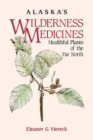 alaska native plants alaska u0027s wilderness medicines healthful plants of the far north