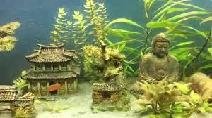 Asian Themed Fish Tank Decorations Fishtank Beautiful Asian Decoration Youtube