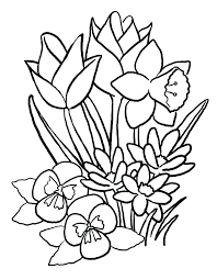 coloring pictures of hibiscus flowers hibiscus flower coloring page terkepes info