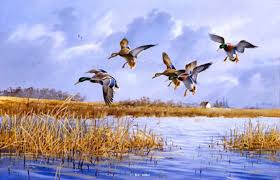 goose hunting original in private collection waterfowl paintings original waterfowl