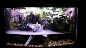 i bought a fogger for my terrarium aquarium and after only a few