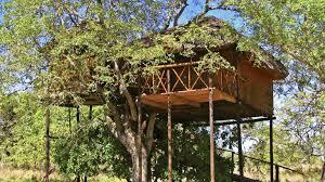pezulu tree house game lodge in hoedspruit u2014 instant booking