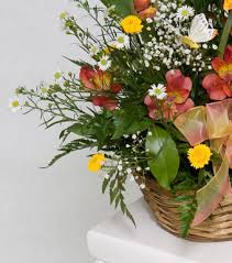 sympathy flowers delivery sympathy flower delivery saratoga springs glens falls clifton