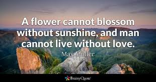 Flower And Love Quotes - flower quotes brainyquote